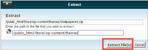 'Extract File(s)' button