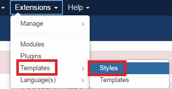 Click on the 'Styles' option