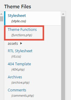 'Theme Function (functions.php)' option
