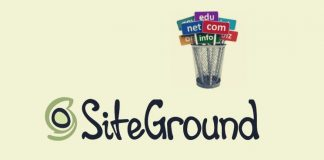 Is SiteGround Good For Domain Name Hosting